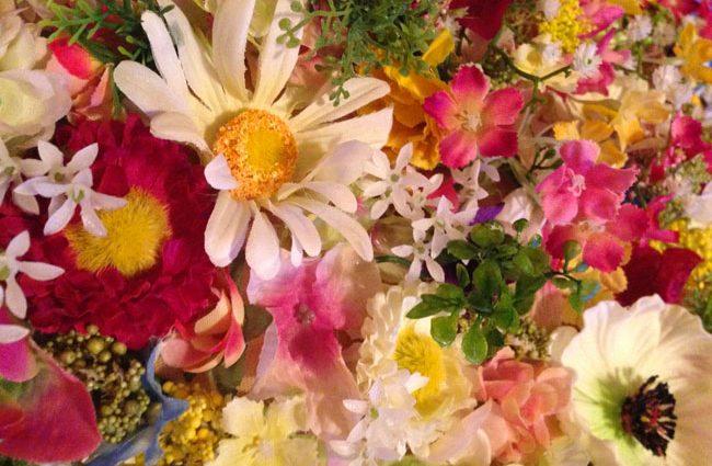 fleurs-monstre