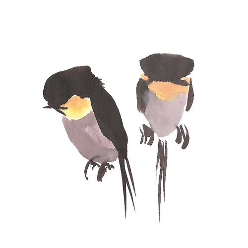 hirondelle-couple